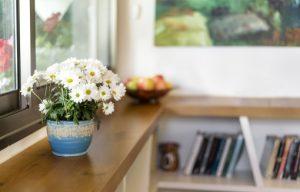 תצלום תקריב פרחים פרויקט הדירה